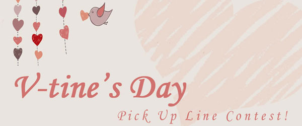Valentineu0027s Day Pick Up Line Contest!