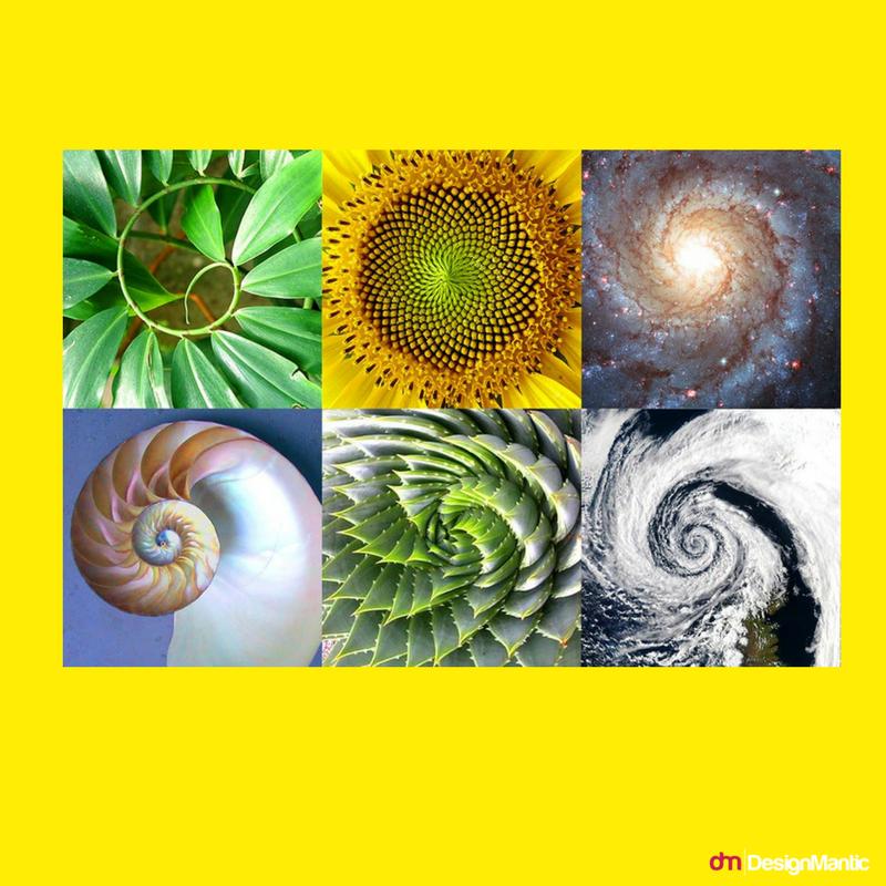 Golden Ratio in Nature