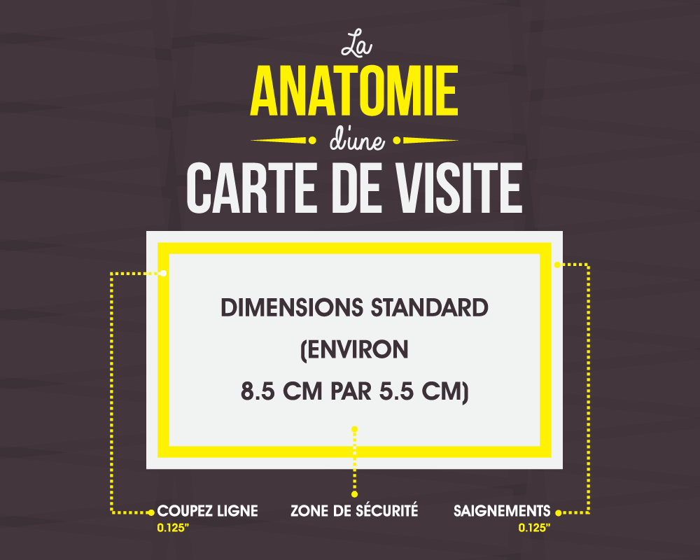 [French Version] La Anatomie D'une Carte De Visite