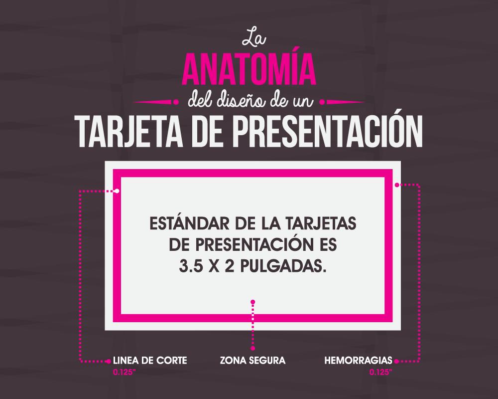[Spanish Version] La anatomía del diseño de un tarjeta de presentación