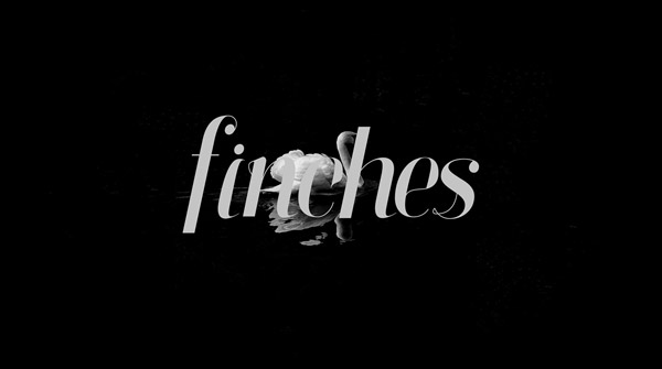 Finches Font