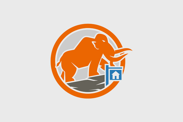 Orange Elephant Logo