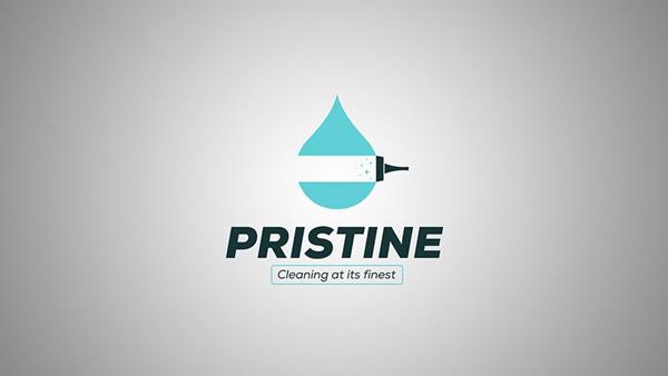Cleaning Logos 4
