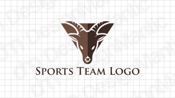 Sports Logo Design 13