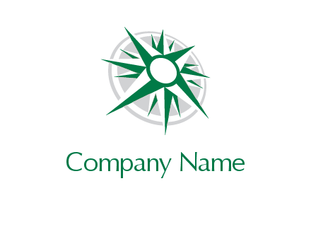 compass star and circle logo