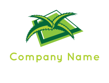 palm leaves logo
